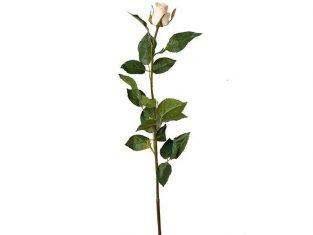 Gałązka róży Rose Poudre 56cm