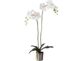 Sztuczny storczyk biały podwójny BBHome Orchidea 90 cm