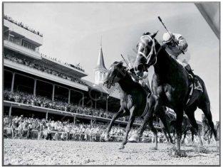 Fotografia Horse Racing 81×61 cm