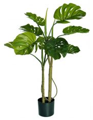 Kwiat w doniczce BBHome  Monstera Pot 90cm