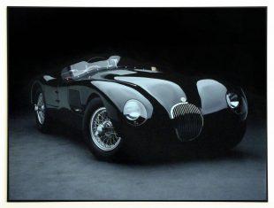 Fotografia Jaguar C-Type, 1951r 81x61cm