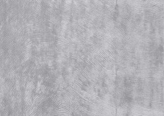 Dywan Zień Canyon Silver 160x230cm