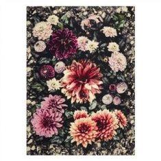 Pled dekoracyjny Designers Guild Dahlia Noir Fuchsia 130x180cm