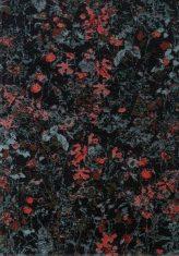 Dywan Secret Black 160x230cm Fargotex