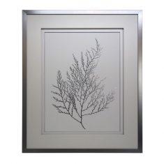 Grafika Silver Foil Algae 1 Almi Decor 85x105cm