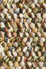 Beżowo Zielony Dywan Pleciony - MARBLE 29517 Brink & Campman