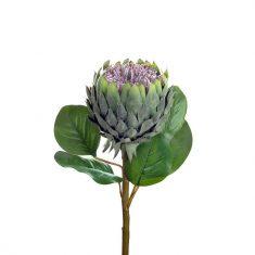 Kwiat Protea BBHome 75cm