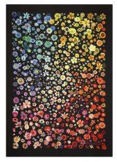 Pled dekoracyjny Jardin des Hespérides Multicolore Christian Lacroix bbhome